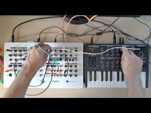 Embedded thumbnail for MicroBrute and PHENOL Analog Synthesizers